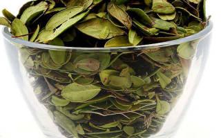 Цистит брусника ягоды или лист