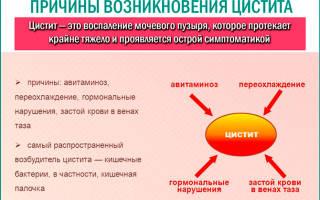 Лекарственные средства для лечения цистита мочевого пузыря