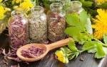 Лечение цистита и молочницы травами
