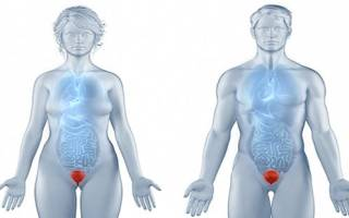 Лечение цистита у женщин при уреаплазме