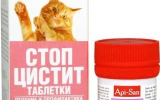 Суспензия стоп цистит для котов