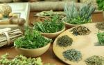 Травяные сборы от цистита у женщин быстрое лечение