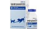 Цефтриаксон при цистите у собак дозировка