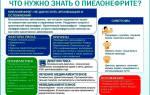 Общий анализ крови при цистите и пиелонефрите