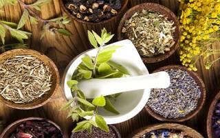 При цистите таблетки растительного происхождения